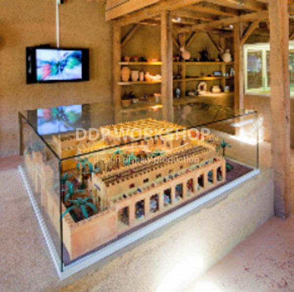 Large Custom display case